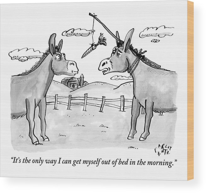 Two Donkeys Are Seen Talking To Each Other Wood Print