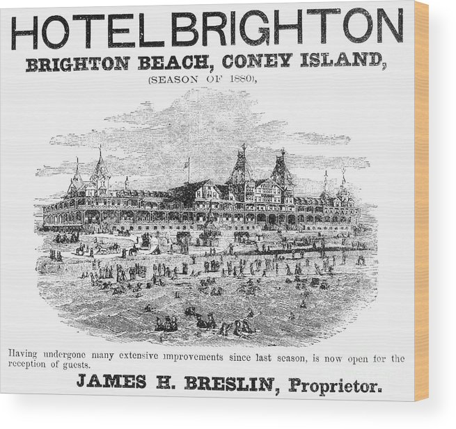 1880 Wood Print featuring the photograph Brighton Beach Hotel, 1880 by Granger