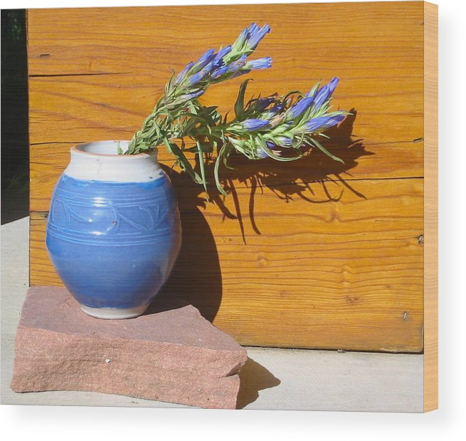 Still Life Photo Wood Print featuring the photograph Study In Blue by Sarah Gayle Carter