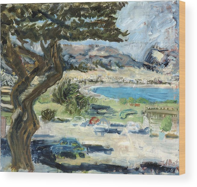 Tree Bay Leaves Shadow Cars Parking Place Hills Bushes Heat Wood Print featuring the painting Apollo Bay by Joan De Bot