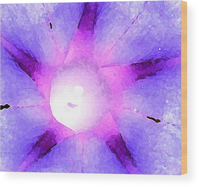 Flower Wood Print featuring the photograph Big Purple Morning Glory Wc 2 by Lyle Crump