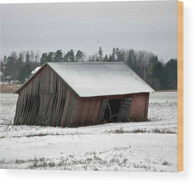 Collapsing Wood Print featuring the photograph Collapsing Barn by Jarmo Honkanen