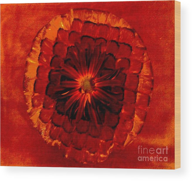 Photo Wood Print featuring the photograph Daisy Red Abstract by Marsha Heiken
