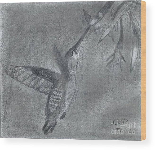 Flying Hummingbird Wood Print featuring the painting Hummingbird by Epic Luis Art