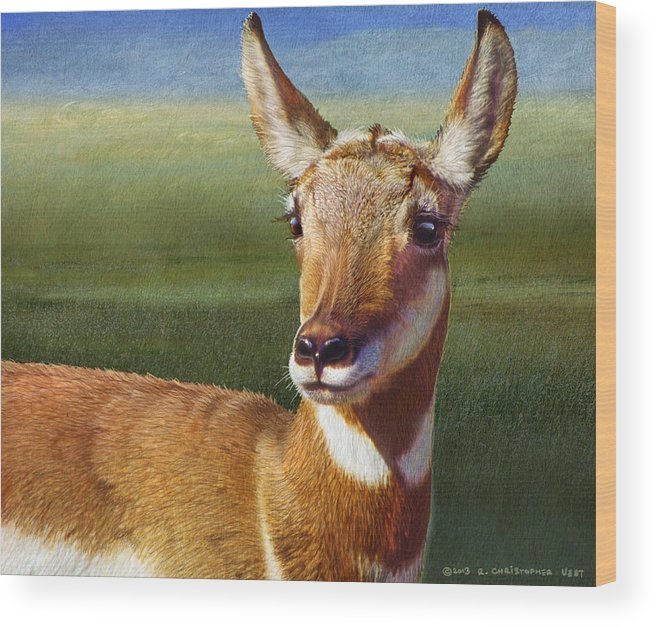 Pronghorn Wood Print featuring the painting Lady Pronghorn by R christopher Vest