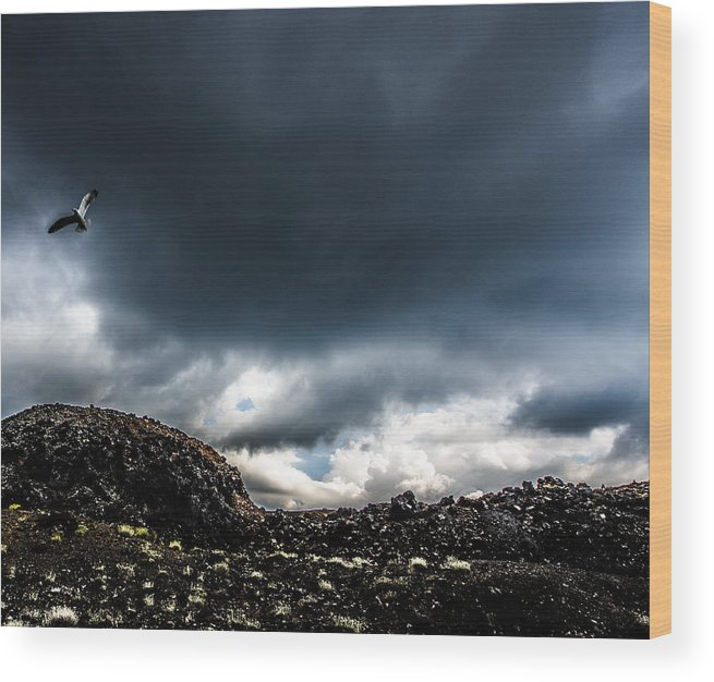 Landscape Wood Print featuring the photograph Volcano View by Kyriakos Kyriazis