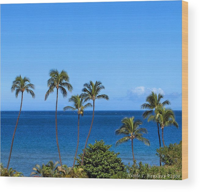 Palm Trees Wood Print featuring the photograph 7 Palms by Nicole I Hamilton