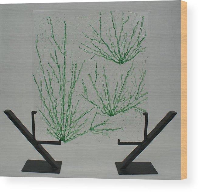 Fused Glass Green pale Green Desert Grass Network standing Art Stand Wood Print featuring the glass art Desert Grass by Louis Copper