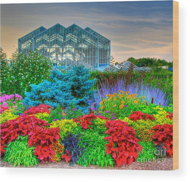 grand rapids michigan wood print featuring the photograph frederik meijer gardens 2 by robert pearson - Frederik Meijer Garden