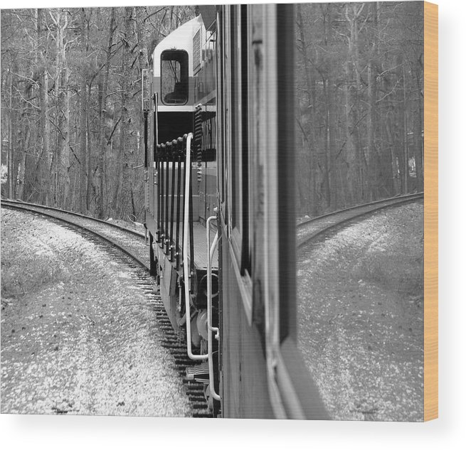 Train Wood Print featuring the photograph Reflections In Riding by Barbara Palmer