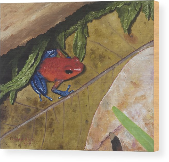 Poison Dart Frog Wood Print featuring the painting Strawberry Poison Dart Frog by Elizabeth Rieke Hefley