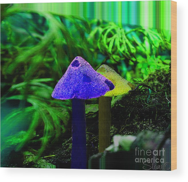 Mushroom Wood Print featuring the photograph Trippy Shroom by September Stone