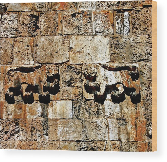 Israel Wood Print featuring the photograph Israel Wall Bas Relief by Henry Kowalski