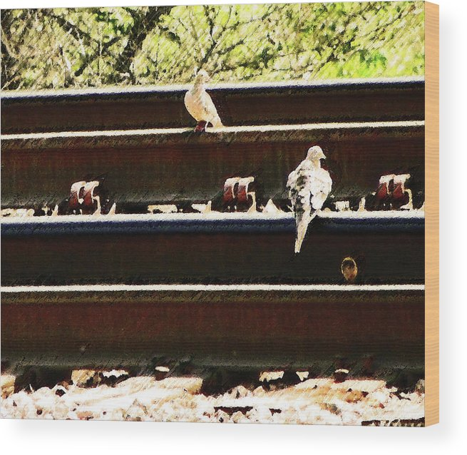 Abstract Wood Print featuring the photograph Doves On The Tracks by Lenore Senior