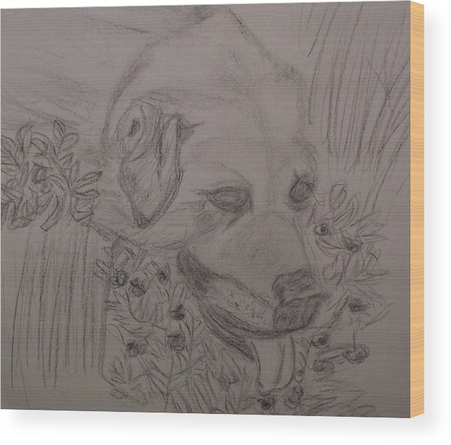 Animals Wood Print featuring the drawing Summer by Ann Whitfield