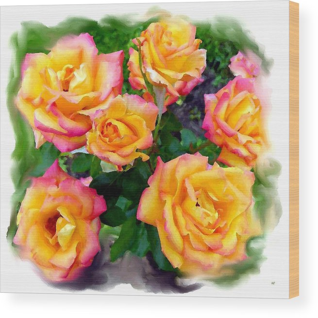 Country Roses Watercolor Wood Print featuring the digital art Country Roses Watercolor by Will Borden