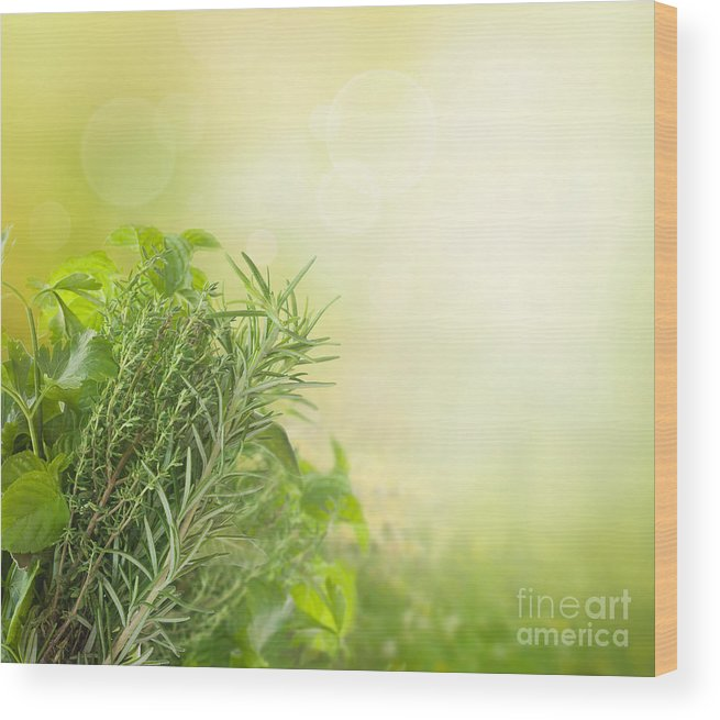 Bokeh Wood Print featuring the photograph Herbs With Copyspace by Mythja Photography