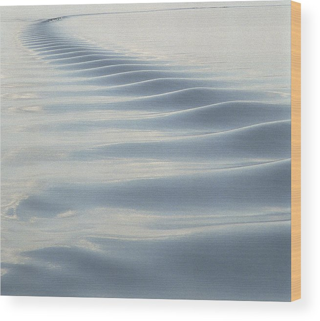 Alaska Wood Print featuring the photograph Wake by Marcus Best