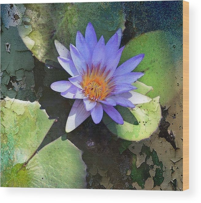 Lavender Lily Wood Print featuring the photograph Floral Fascination by Tamara Gibbs
