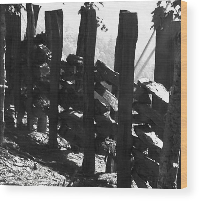 Landscape Wood Print featuring the photograph Split Rail Fence by Donna Thomas