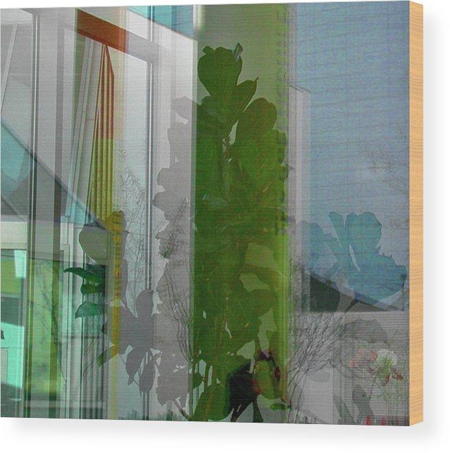 Window Wood Print featuring the photograph Subtle Reflections by Nabila Khanam