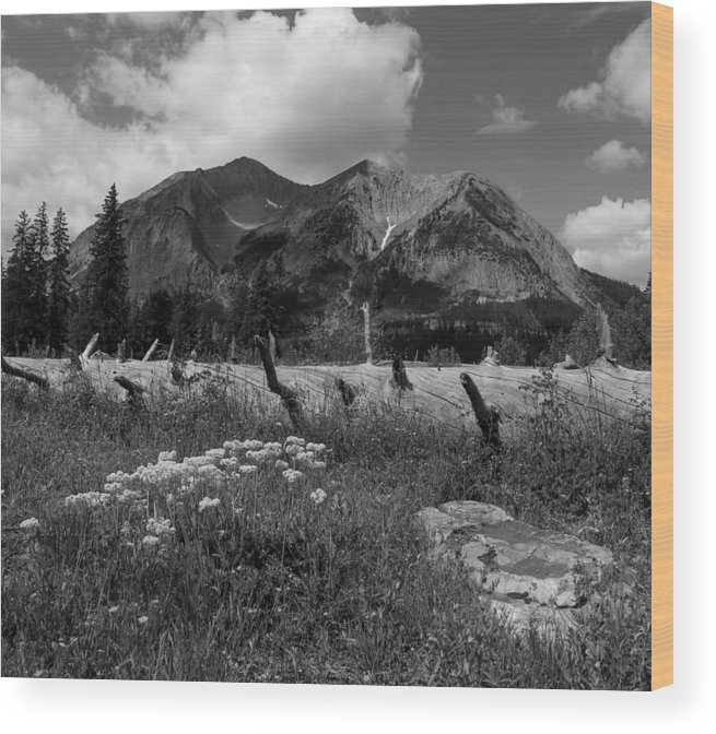 Gothic Wood Print featuring the photograph Gothic Bw by Kevin Buffington