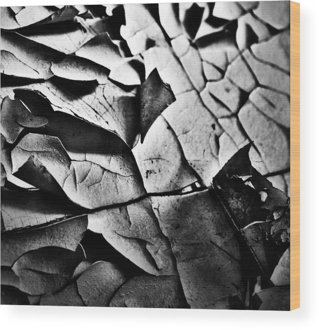 Well Wood Print featuring the photograph Peeled Pretty by The Artist Project