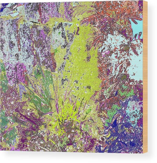 Abstract Wood Print featuring the photograph Brimstone Fantasy by Ian MacDonald