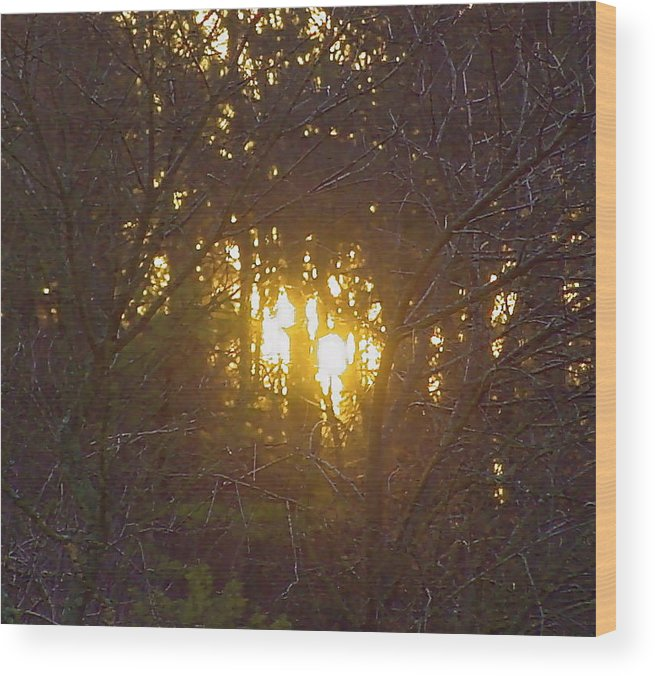 Landscape Abstraction Wood Print featuring the photograph Photo Winter Solstice Dawn by Ray Petersen