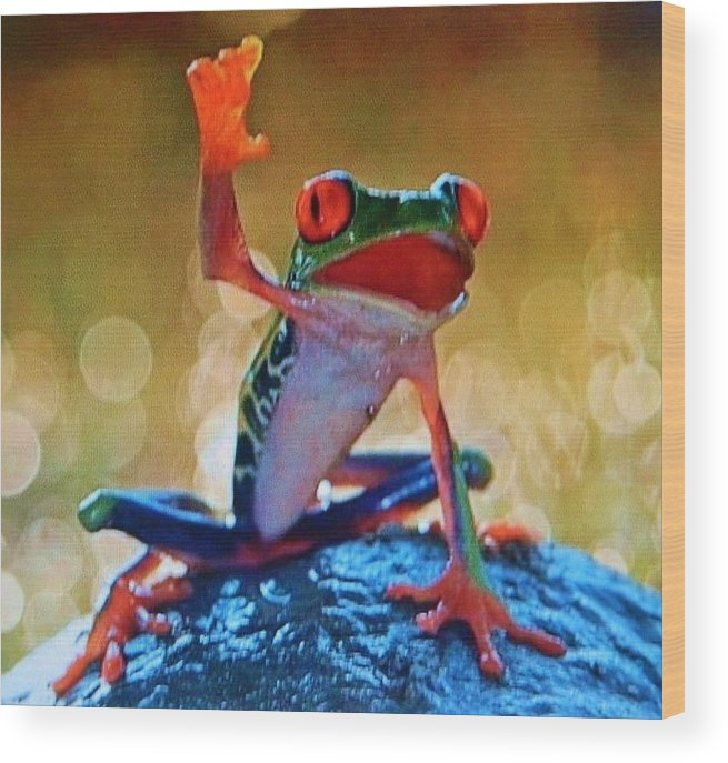 Wood Print featuring the photograph Exotic Frogs by Gunter Hortz