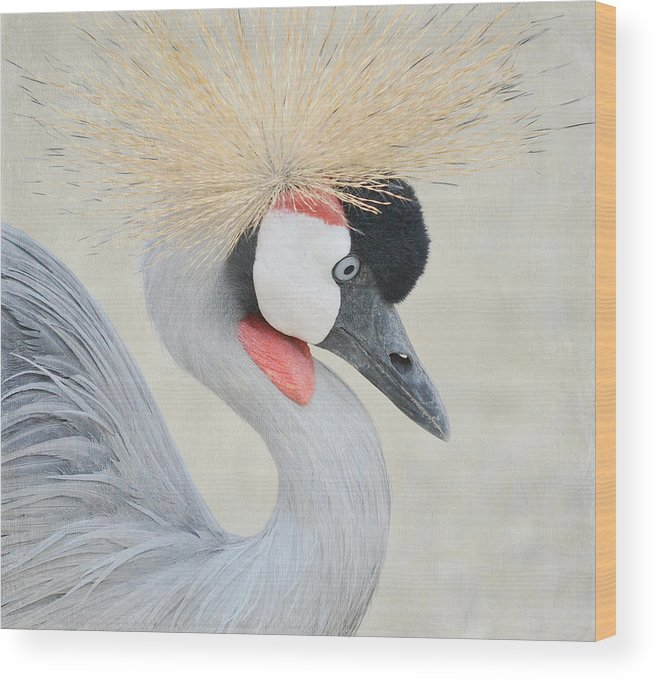 African Crowned Crane Wood Print featuring the photograph Golden Headdress 4 by Fraida Gutovich