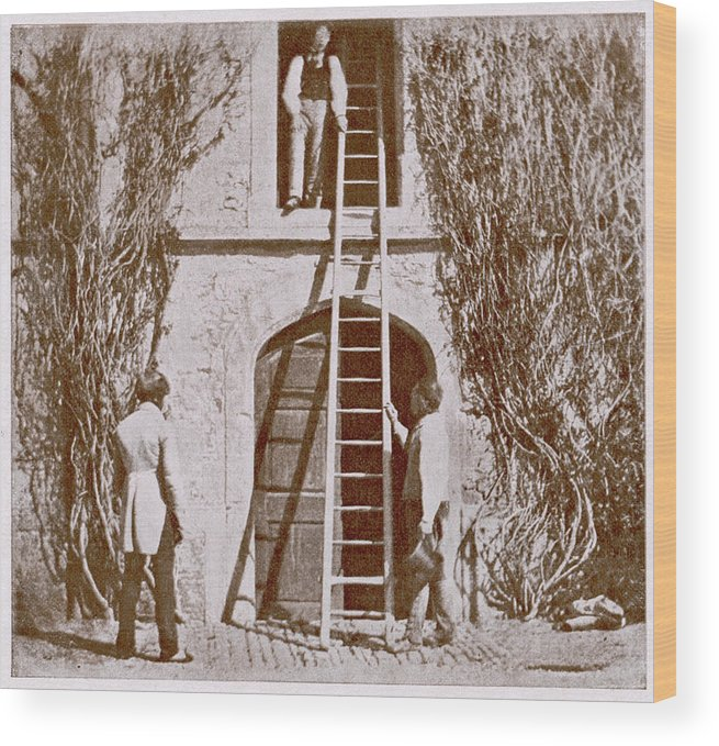 Fox Wood Print featuring the photograph William Henry Fox Talbot by Mary Evans Picture Library