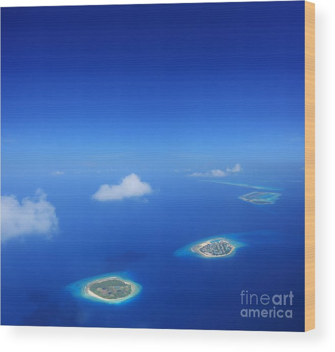 Color Wood Print featuring the photograph Aerial View Of Maldives Islands In by Ljupco Smokovski