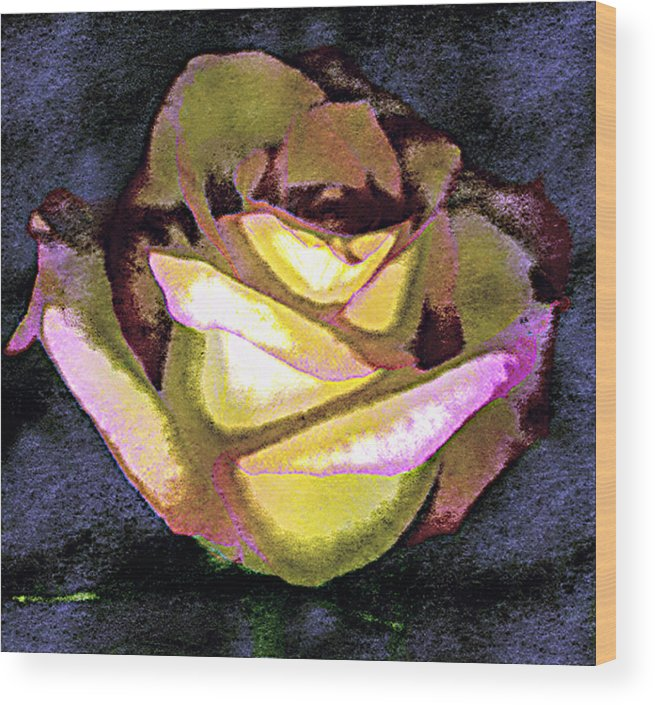 Digital Photogram Wood Print featuring the photograph Scanned Rose Water Color Digital Photogram by Paul Shefferly