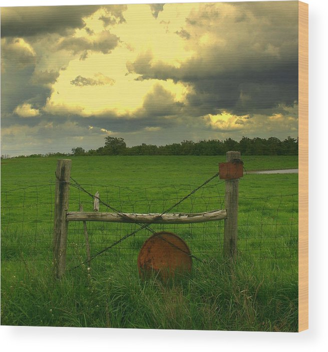 Pasture Wood Print featuring the photograph Good Fences by Robert Shinn