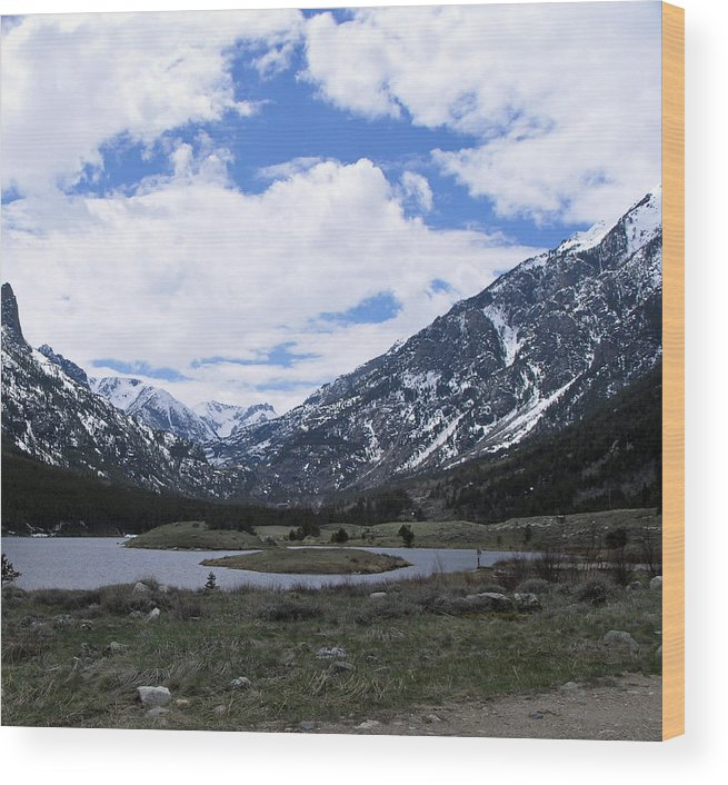 Montana Wood Print featuring the photograph Emerald Lake Area by Janis Beauchamp