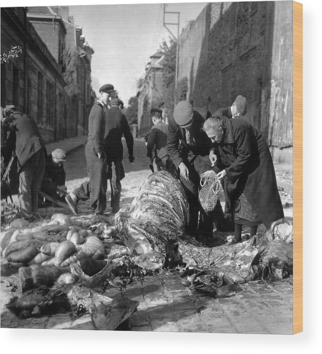 History Wood Print featuring the photograph Hungary Civilians Butcher A Dead Horse by Everett