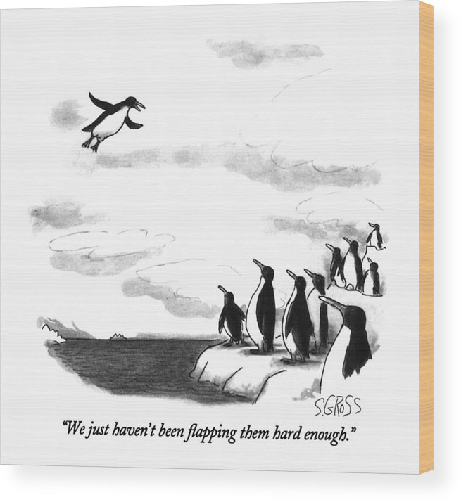 One Penguin Flying To A Group Of Penguins Who Are Perched On An Iceberg. Animals Wood Print featuring the drawing We Just Haven't Been Flapping Them Hard Enough by Sam Gross