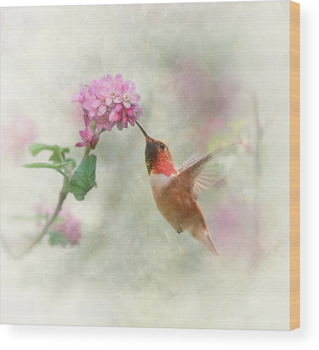 Hummingbird Wood Print featuring the photograph Enchantment In The Garden by Angie Vogel