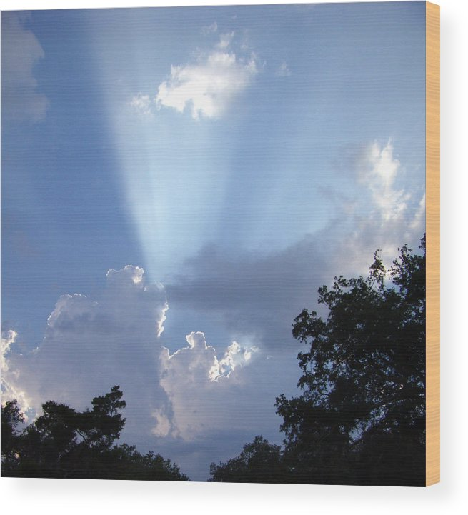 Sky Wood Print featuring the photograph Light Of Day by Nicole I Hamilton