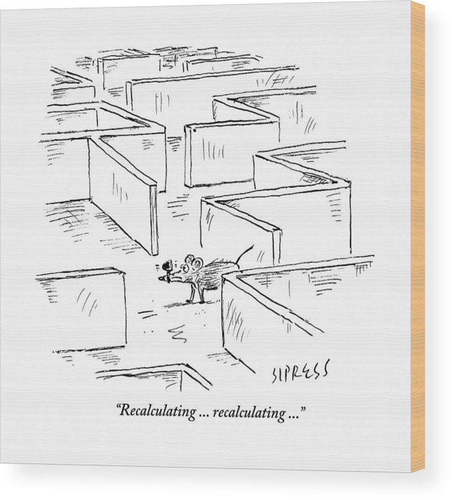 Mice Wood Print featuring the drawing A Mouse Uses A Global Positioning System Gps by David Sipress