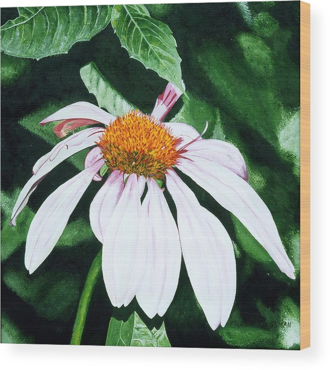 Daisy Wood Print featuring the painting Lazy Day by Carol Messman Steele