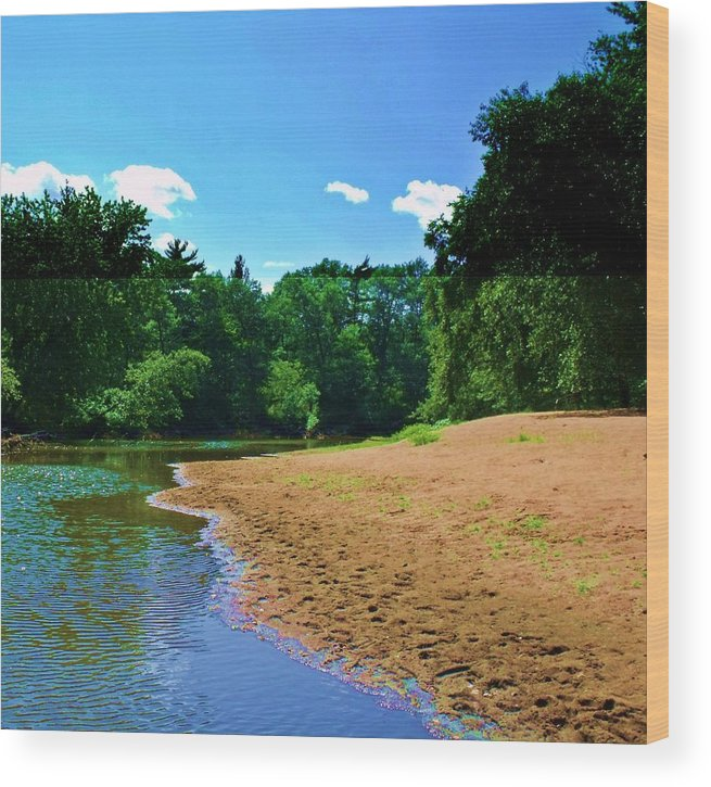 Wood Print featuring the photograph Yellow River Sanctuary 5 by Dave Dresser