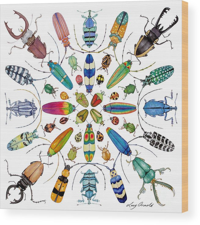 Insects Wood Print featuring the painting Beautiful Beetles by Lucy Arnold