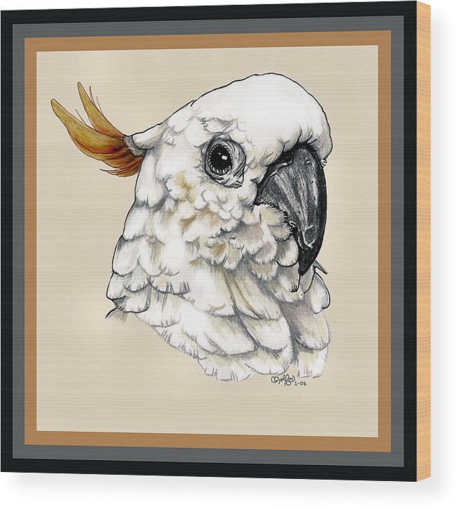 Cockatoo Wood Print featuring the drawing Cockatoo by Crystal Rolfe