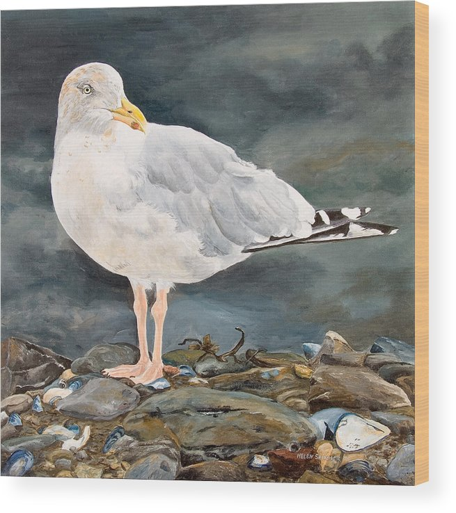 Gull Wood Print featuring the painting Eugene by Helen Shideler