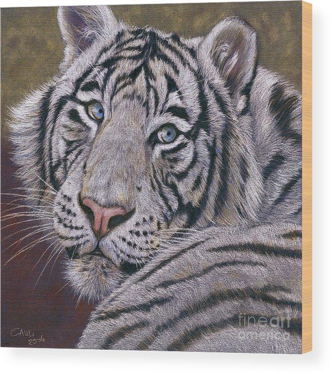 Tiger Wood Print featuring the painting White Tiger by Svetlana Ledneva-Schukina