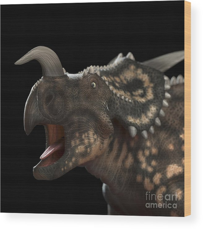 3d Visualization Wood Print featuring the photograph Dinosaur Einiosaurus by Science Picture Co