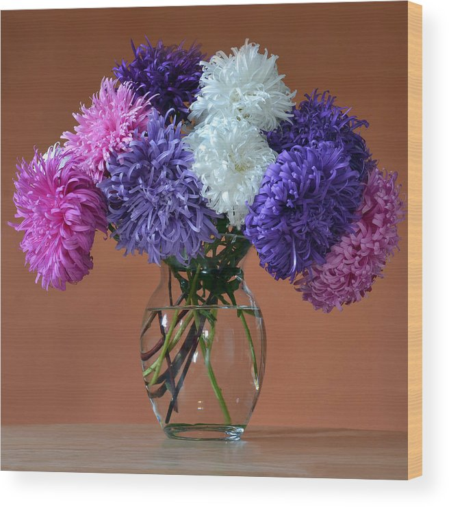 Asters Wood Print featuring the photograph Astonishing Asters. by Terence Davis