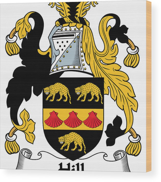 Hill Wood Print featuring the photograph Hill Coat Of Arms II Irish by Heraldry